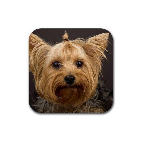 Yorkshire Terriers Coasters Set