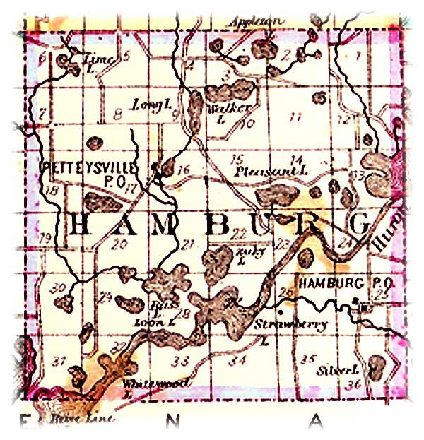 1880 HAMBURG TOWNSHIP LIVINGSTON COUNTY MAP