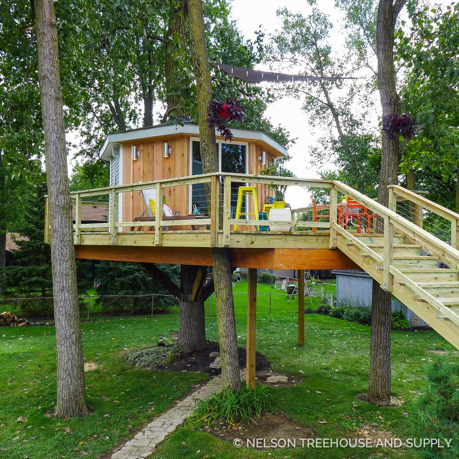 Surprise Treehouse Makeovers