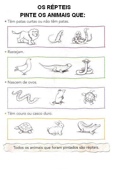 Resultado De Imagem Para Desenhos De Animais Que Nascem Do Ovo