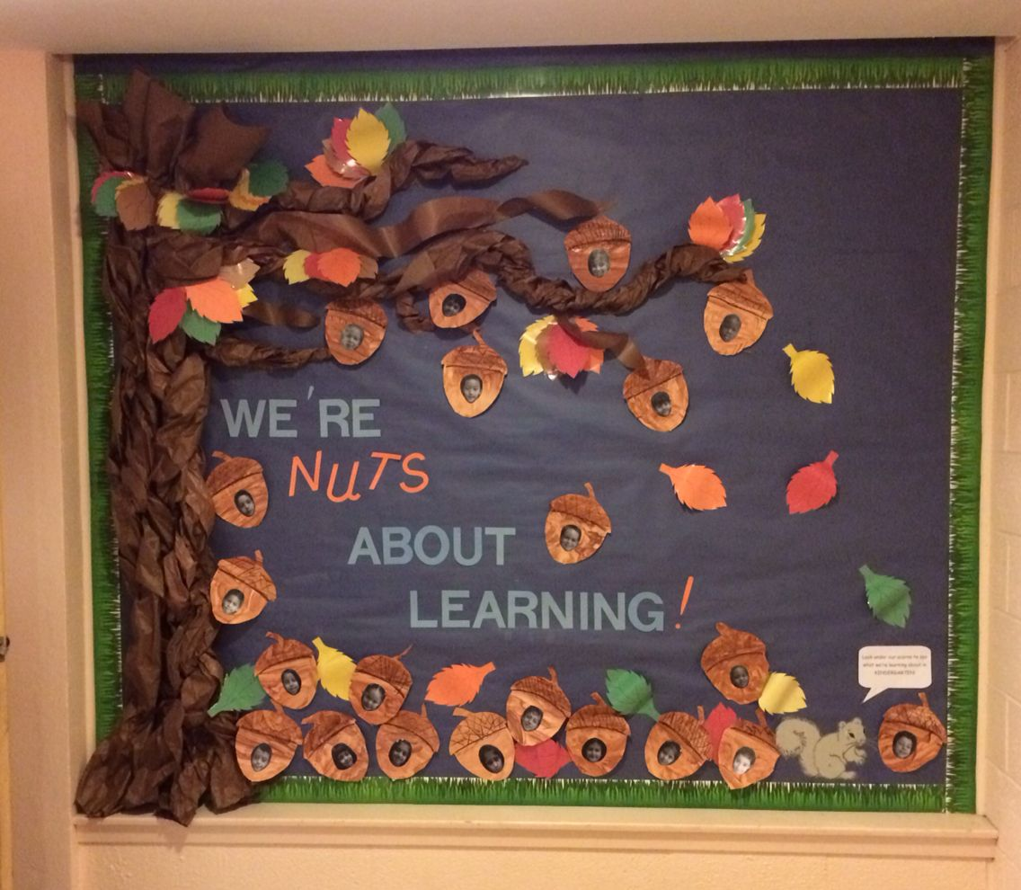 Fall bulletin board we 39 re nuts about learning for Fall bulletin board ideas