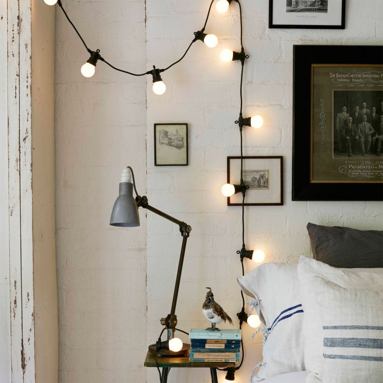 shop festoon lights from browse our trending collection of big bulb lighting with big bundles available too
