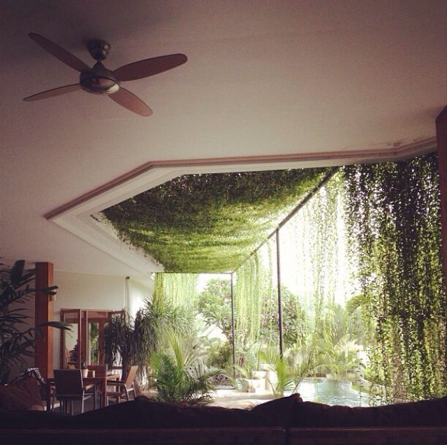 Skylight Covered In Vines House Design House Indoor