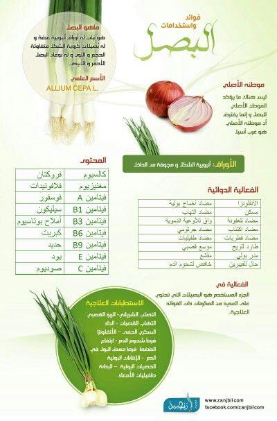 Pin By Saja Khalid On فوائد Nutrition Lol Allium