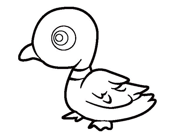 Dibujo De Pato De Rio Para Colorear Dibujos De Animales Patos Dibujos Animales De La Selva