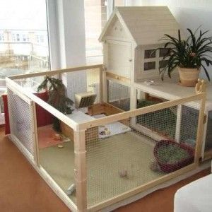 Diy indoor rabbit cages google search rabbits for Homemade bunny houses