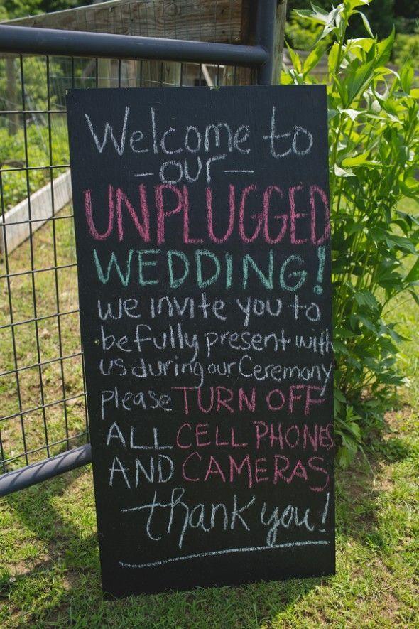 Intimate Backyard Wedding | Unplugged wedding, Unplugged wedding ...