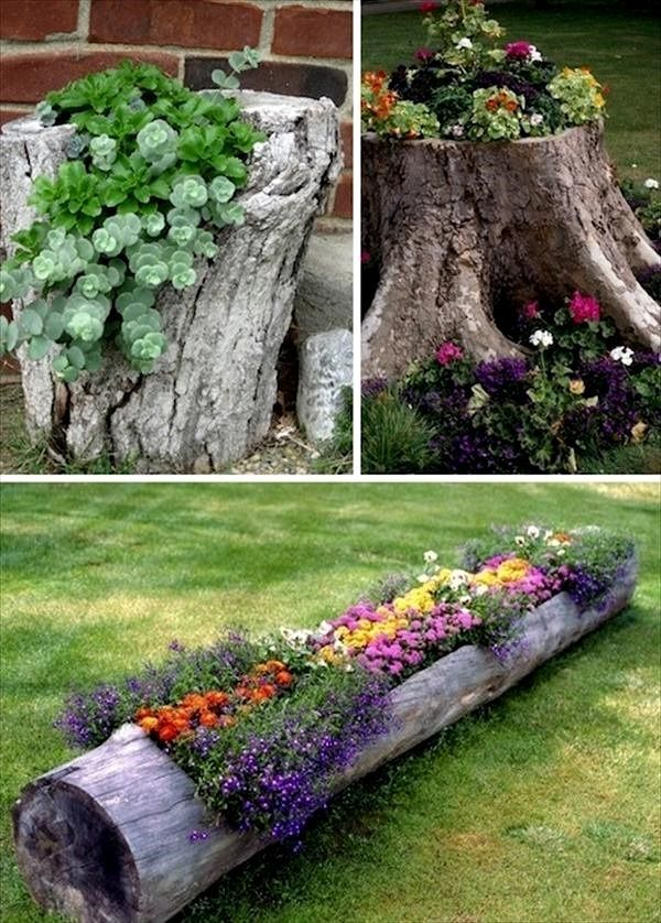 Love!!! DIY Tree Stump Planters, DIY Backyard Projects and Garden
