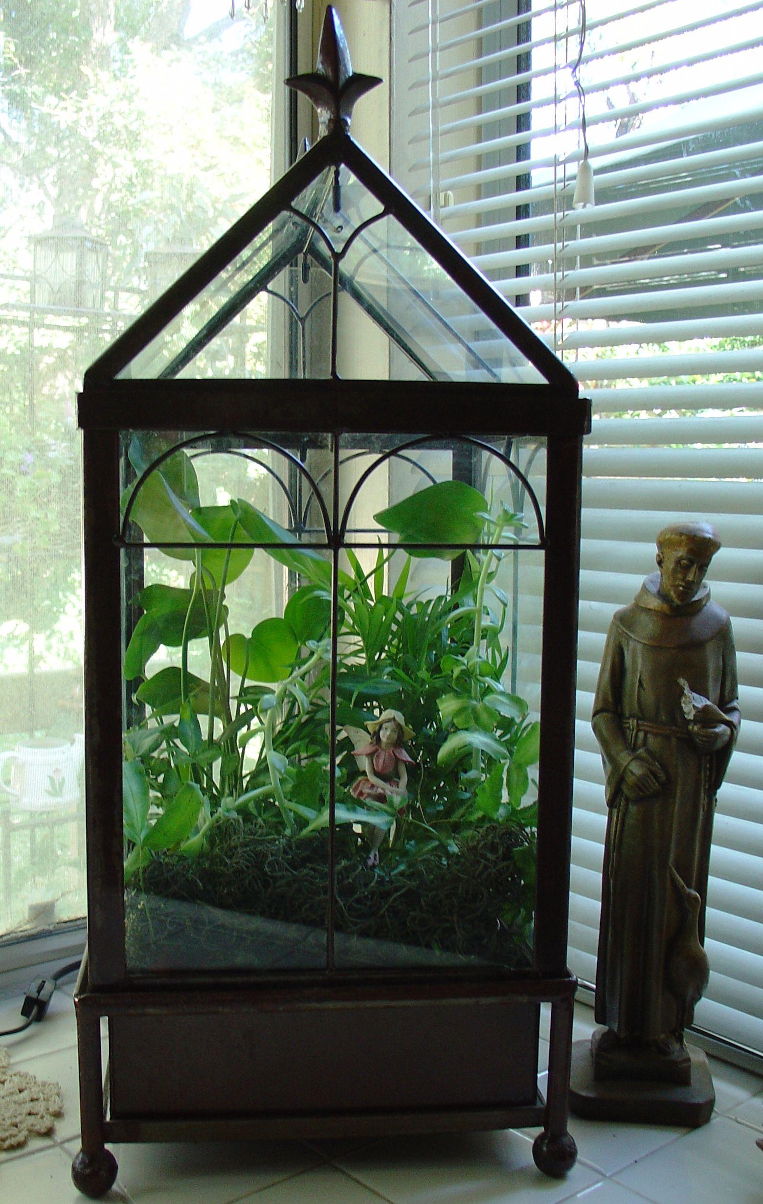 An indoor fairy garden build your own terrerium to bring for Make your own indoor garden