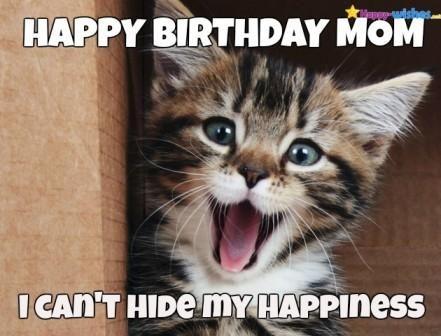 Happy Birthday Mom Meme Memes Meme Happybirthdaymommeme