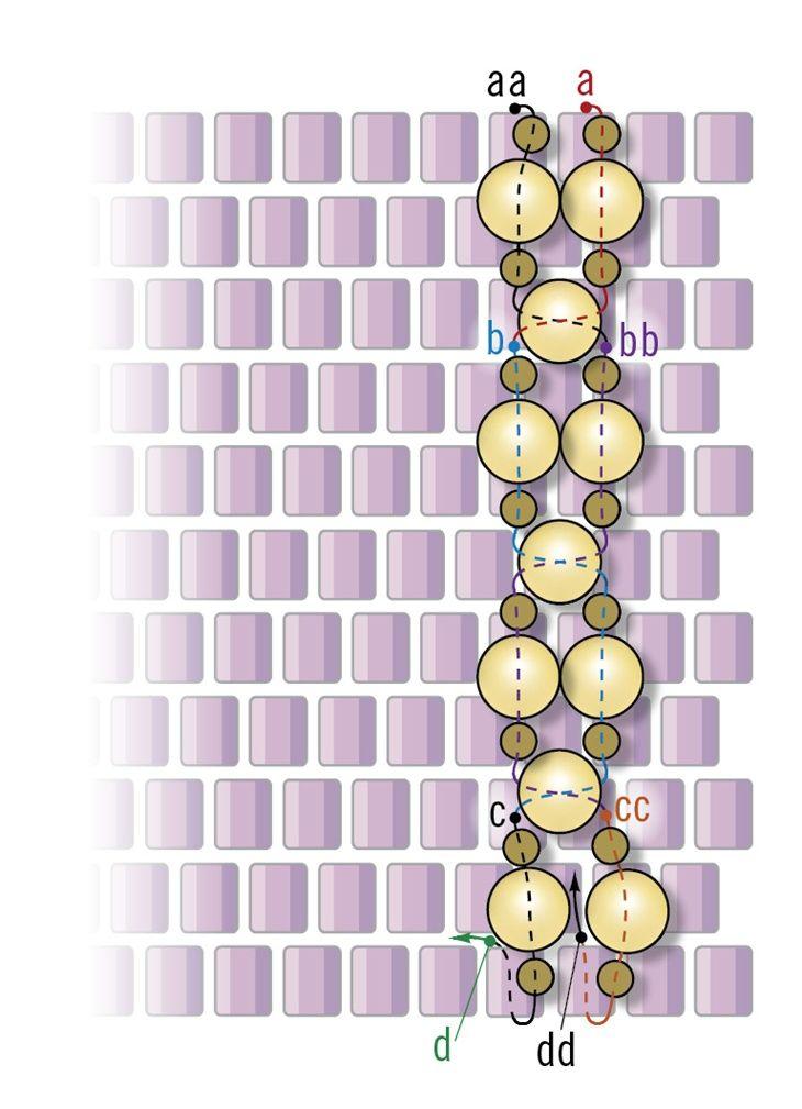 Crystal peyote bracelet Figure 1