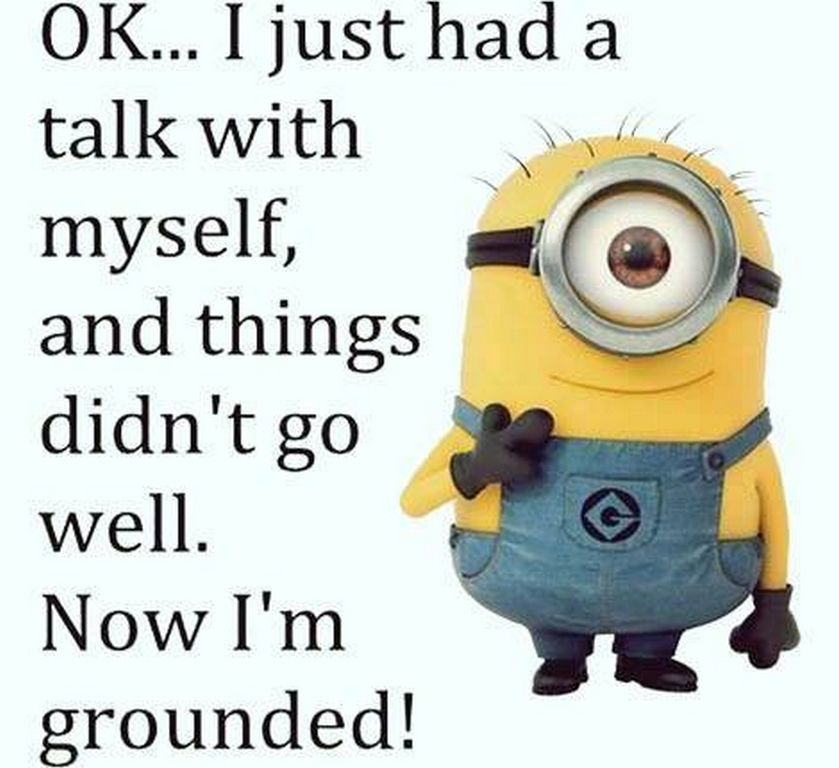 Perfect Random Comical Minions Quotes AM, Thursday February 2016 PST)   10 Pics   Funny  Minions