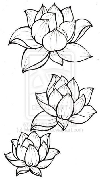 Pin By Amanda Brandao On Tattoo In 2020 Lotus Blossom Tattoos Flower Drawing Flower Outline