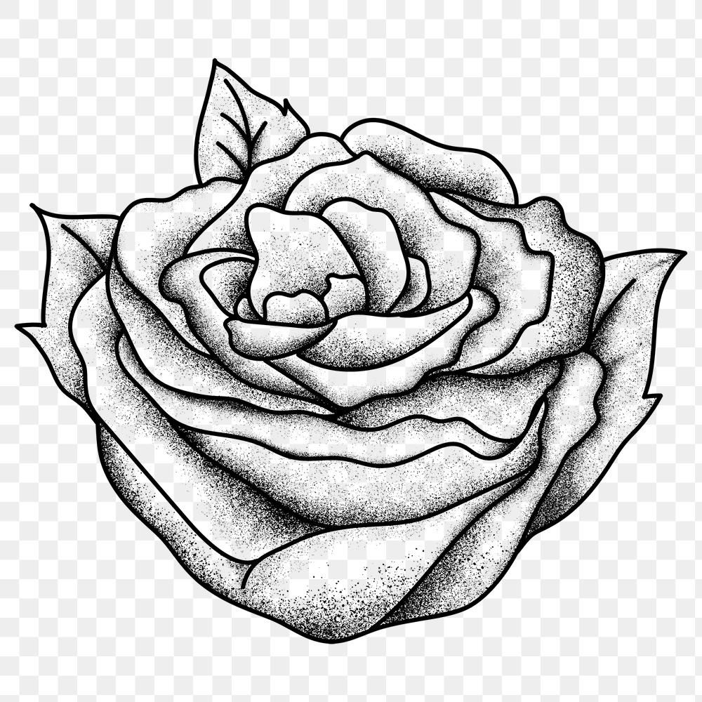 Flash Old School Tattoo Black And White Rose Vintage Png Symbol Free Image By Rawpixel Com Techi Old School Tattoo School Tattoo Free Illustrations