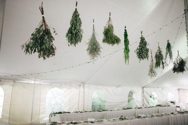 Hanging herb decorating the reception tent