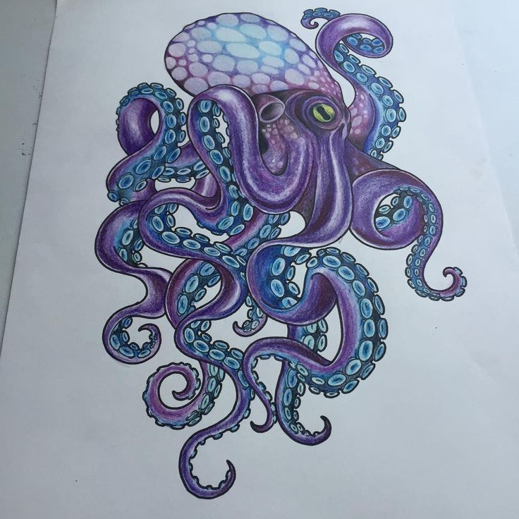 Photo of Octopus Tattoo – Über 300 Bildideen, #ideen #Octopus #OctopusTattoodrawing #Bild #Tattoo