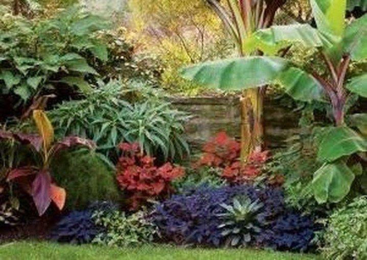 50 fantastische tropische Garten-Landschaftsgestaltung-Ideen  #fantastische #garten #ideen #landschaftsgestaltung #tropische #tropischelandschaftsgestaltung