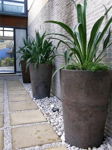 Planting On Narrow Strip With High Containers For Unobstructive Walkway Idea  For Side Path Along Lightwell Instead Of Paving It Completely.