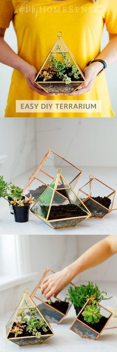 No green thumb? No worries: @roxanneawest dug up this simple #MyHomeSense terrarium DIY & it's really grown on us. With just a few succulents and a geometric terrarium, it makes the perfect shelfie addition or birthday gift. #succulentterrarium