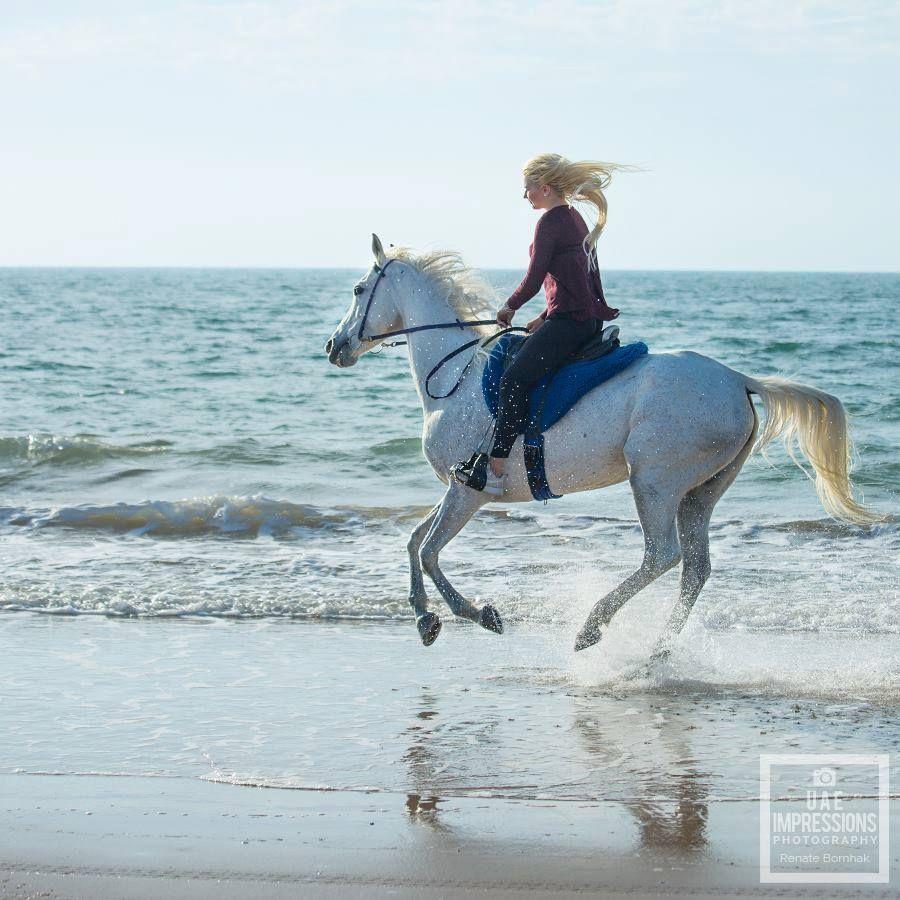 #sunset #rasalkhaimah #horses #horseback #holiday #sunshine #pferde #cheval #chevaux #paard #reiten #urlaub #beach #beachride #strand #strandritt #plage