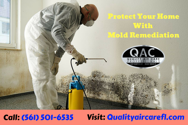 to Quality Air Care, Our Mold remediation is the