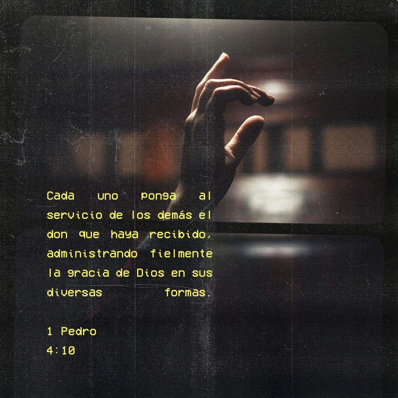1 Pedro 4 10 Cada Uno De Ustedes Ha Recibido De Dios Alguna Capacidad Especial úsela Bien En El Servicio A Los Demá Bible Apps Spiritual Disciplines Gods Love