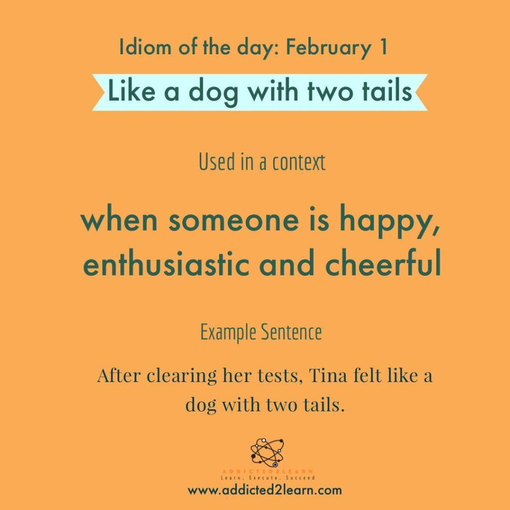 Idioms And Phrases Daily Learn A New Idiom Daily