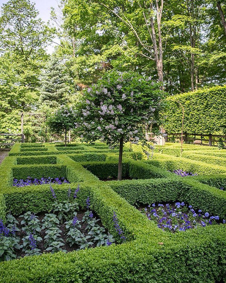 Bunny williams gorgeous parterre garden in connecticut for Garden parterre designs
