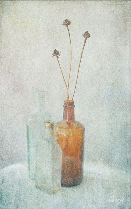 End of summer seed pods and old vintage bottles...