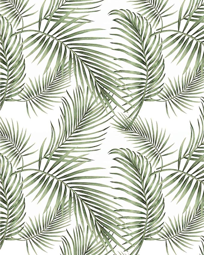 Tropical Palm Wallpaper Rainforest Leaves Contact Paper