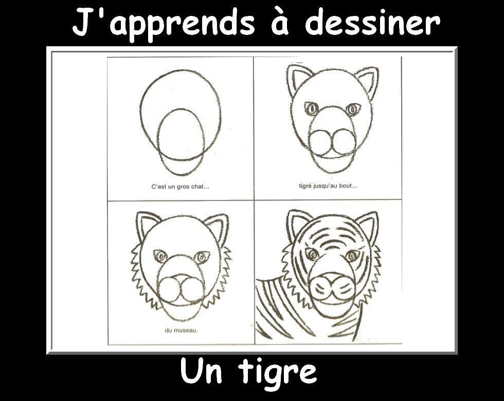 J 39 apprends dessiner les animaux suite en 2019 graphisme drawings drawing for kids et sketches - Dessin de tigre facile ...