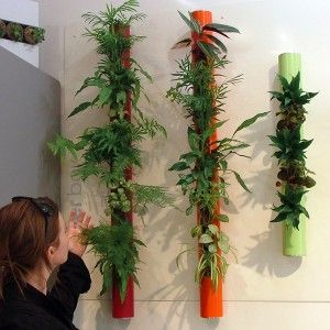 tube v g tal 5 plantes d polluantes rouge 40cm plantes. Black Bedroom Furniture Sets. Home Design Ideas