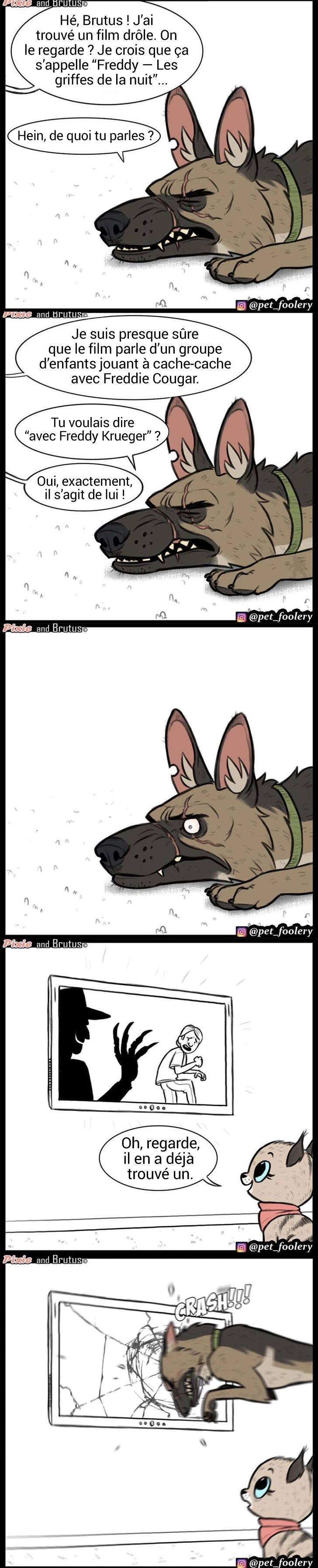 Un artiste dessine des bandes dessinées sur lamitié dun chaton adorable et dun chien qui ne laisseront personne indifférent