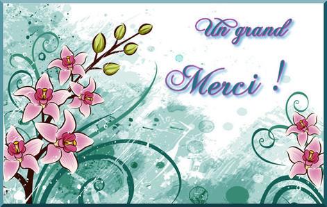 Carte De Remerciements Gratuite A Imprimer Cartes Gratuites Carte Remerciement Anniversaire Carte Remerciement Image De Remerciement