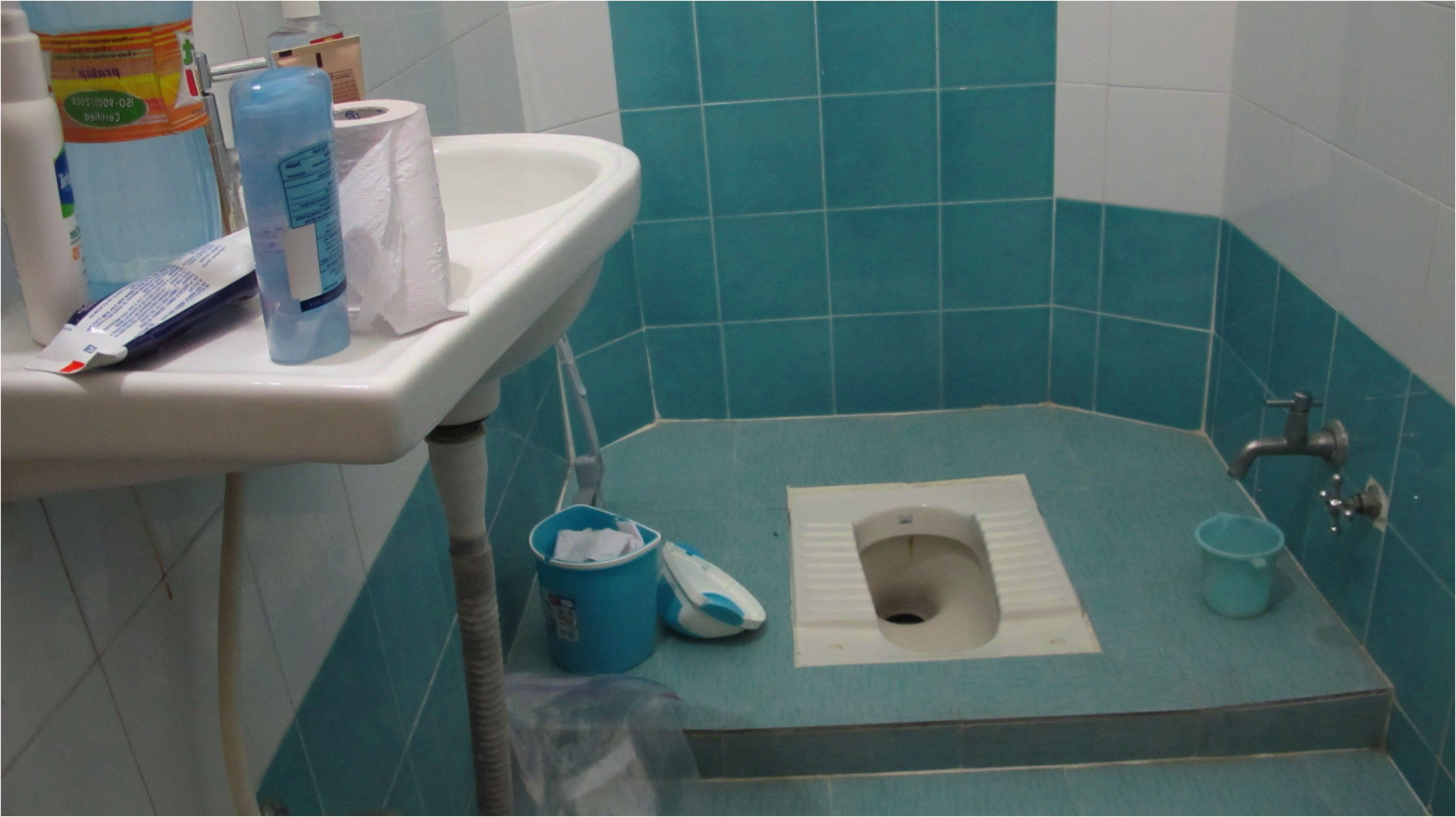 awesome small indian toilet design gallery 3d house ...