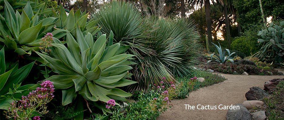 7b33d62555d7f87c5f39ca88a5ad3078 - Rancho Los Alamitos Historic Ranch And Gardens