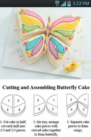 butterfly cake - Simple but pretty.  Back to basics.
