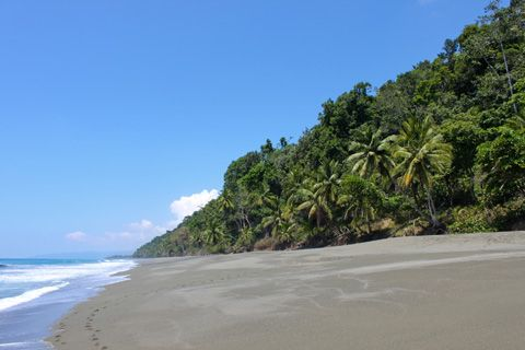 Tranquil jungle beach on Costa Rica's Osa Peninsula.