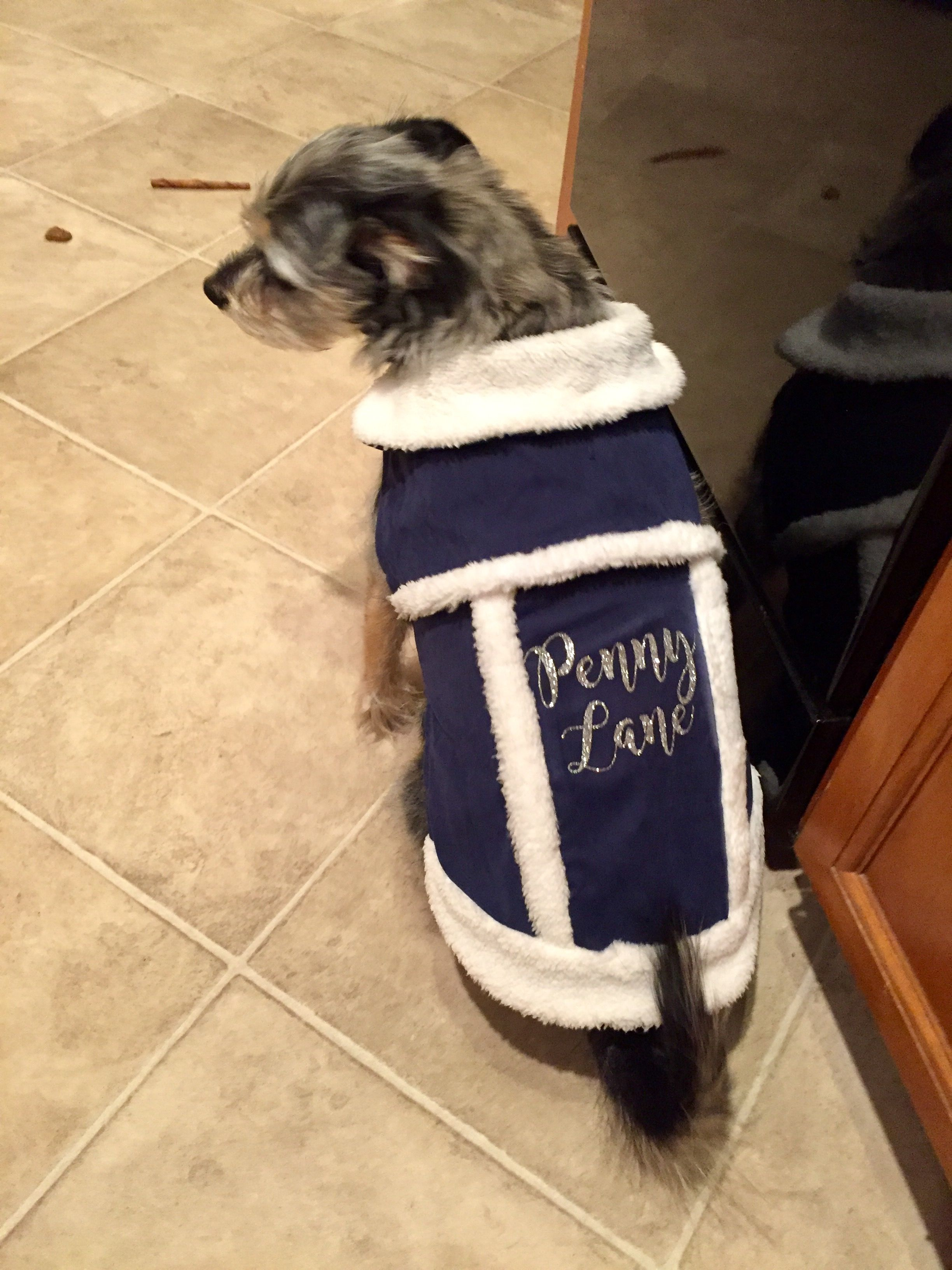 Target $3 dog jacket with Personalized HTV vinyl name iron-on for ...
