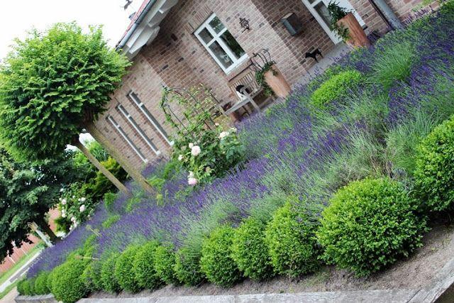 INNENANSICHTEN Gartenräume Garten Pinterest