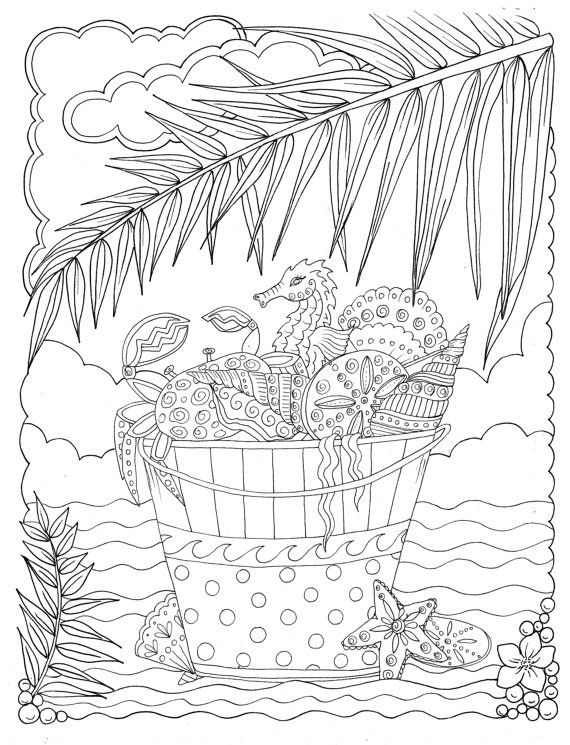 SHELLS Coloring Book Relax Color Adult Stress Less Fun
