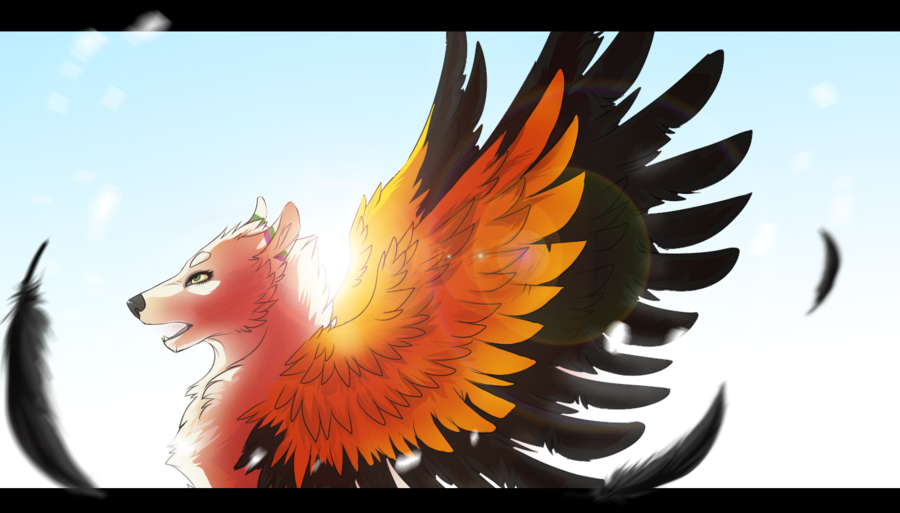 Wings By Rinermai On Deviantart Wolves Pinterest Wings Cat