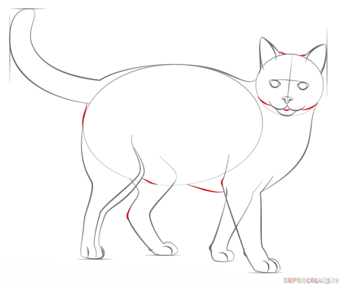 How To Draw A Realistic Cat Step By Step Drawing Tutorials For Kids And Beginners Cat Drawing Tutorial Realistic Cat Drawing Realistic Drawings