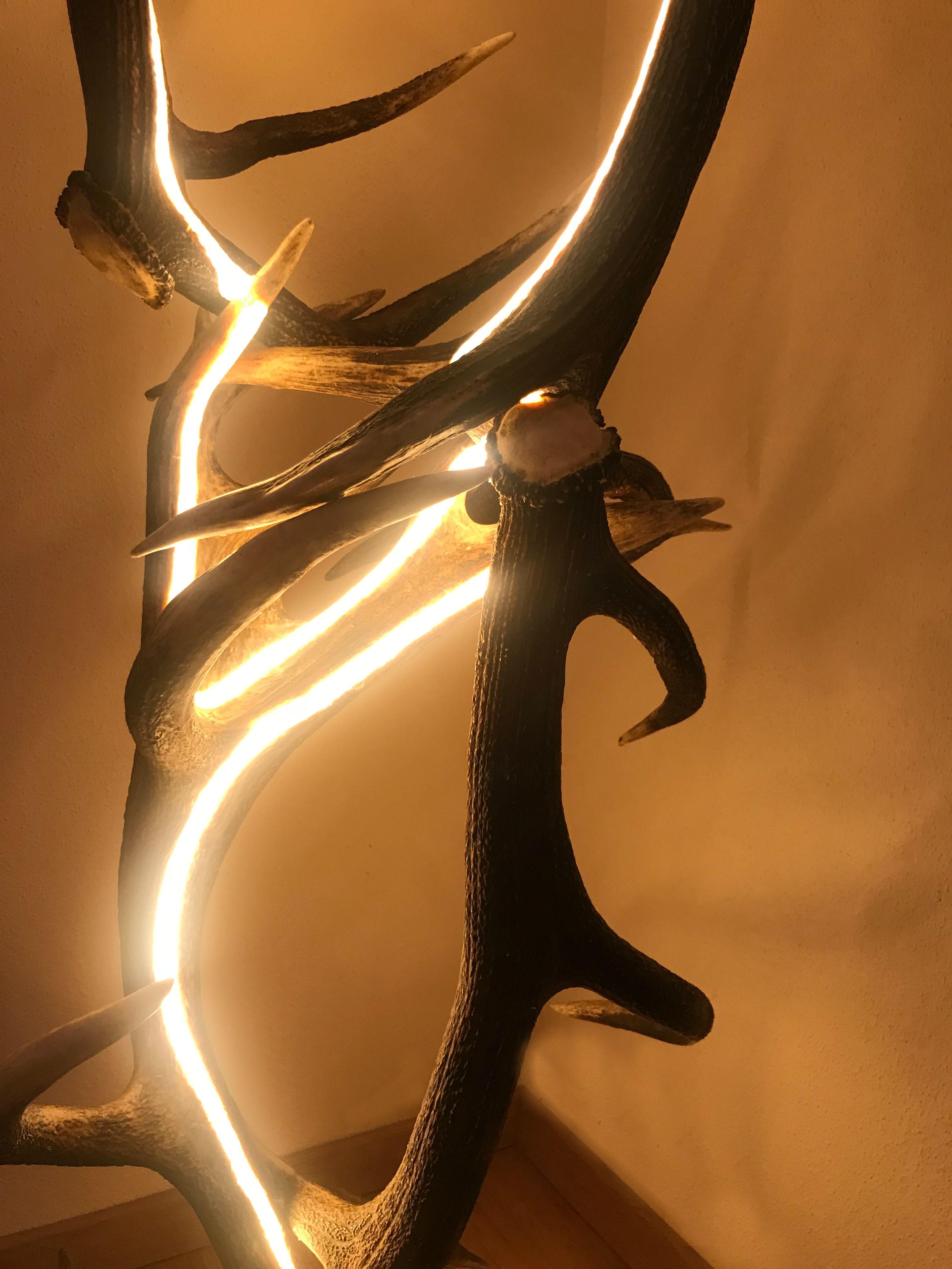 Geweih Design LED Lampe Von Der österreichischen Manufaktur OH MY DEER  Geweih Luster / Geweih Kronleuchter