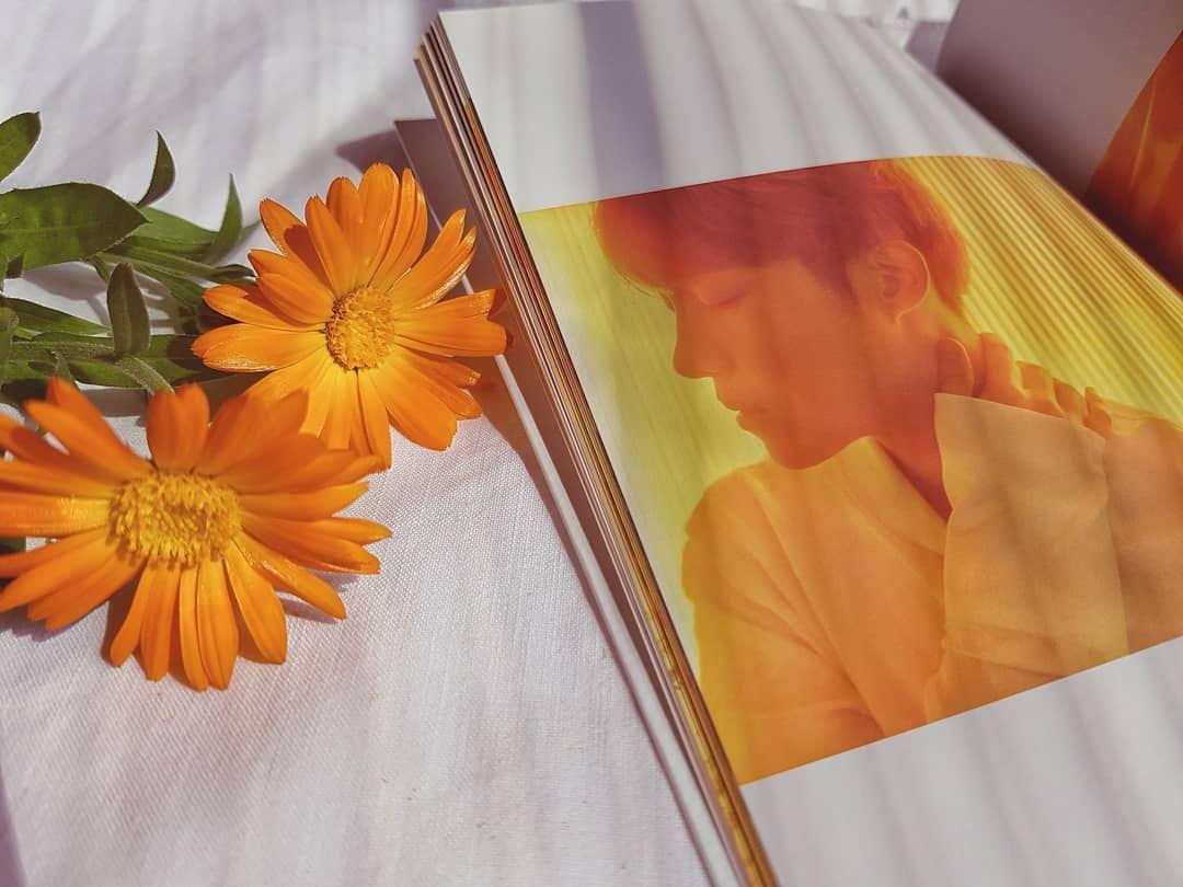 J Hope Hope World Bts In 2019 Orange Aesthetic Yellow Bts