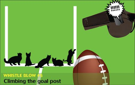 If cats and dogs refereed the Super Bowl: These make excellent scratching posts. —#veterinary dvm360