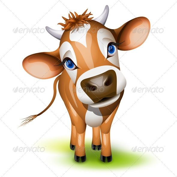 Little Jersey Cow Jersey Cow Cow Vector Cow Eyes