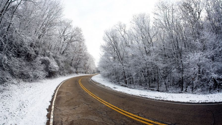 Winter Road Free Download Hd Wallpapers