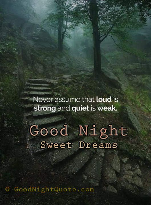 Good Night Motivational Quote To Be Silent Motivational Quotes Words Quotes Words