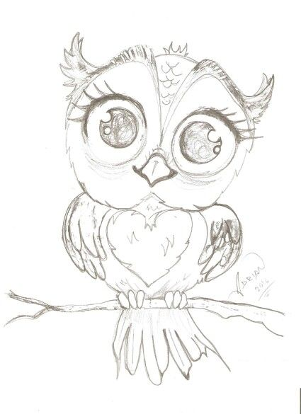 Cute Owl Dessin Chouette Hibou Dessin Dessins Faciles